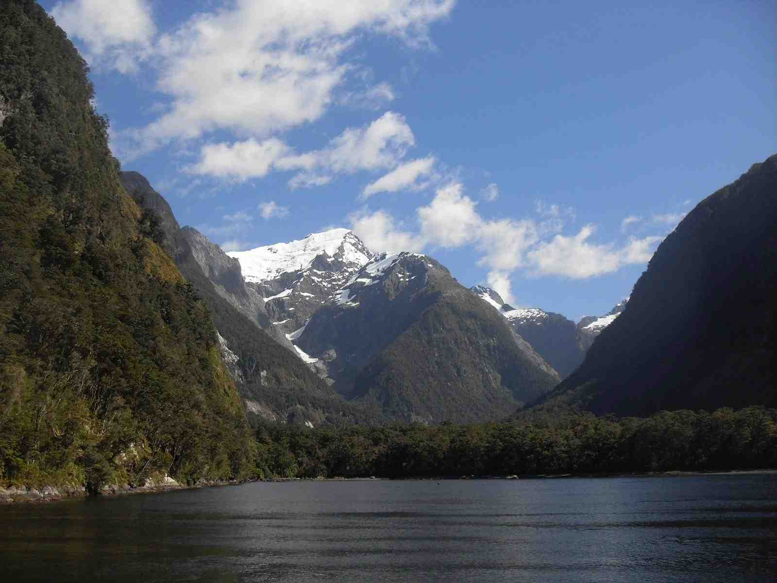 Brief Von Neuseeland Nach Deutschland Kosten : Am abgrund des guten geschmacks work and travel